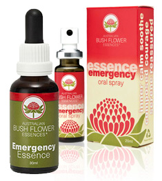 01 Emergency Essence